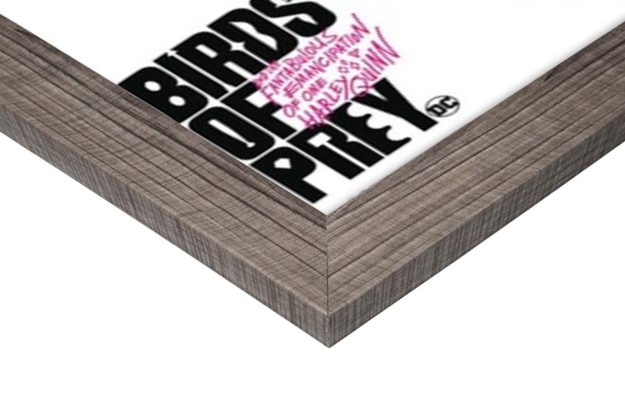 Birds Of Prey - Harley Quinn Poster