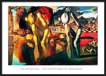 Framed Poster Salvador Dali - Metamorphosis Of Narcissus