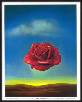 Framed Poster Meditative Rose, 1958